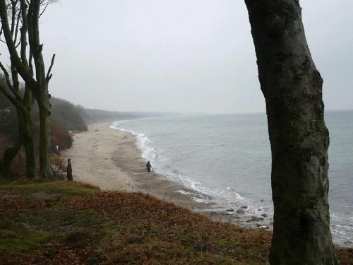 Steilküste zw. Kühlungsborn/Heiligendamm