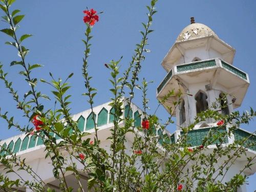 73 Salalah Jebel Qara