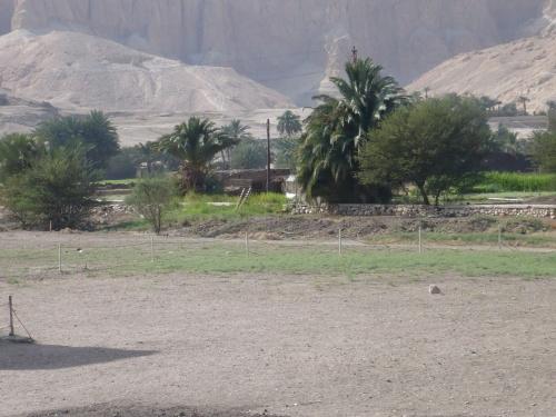 78 Luxor Auf der Fahrt_Fruchtbare Oasen