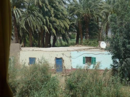 79 Luxor Auf der Fahrt_Fruchtbare Oasen