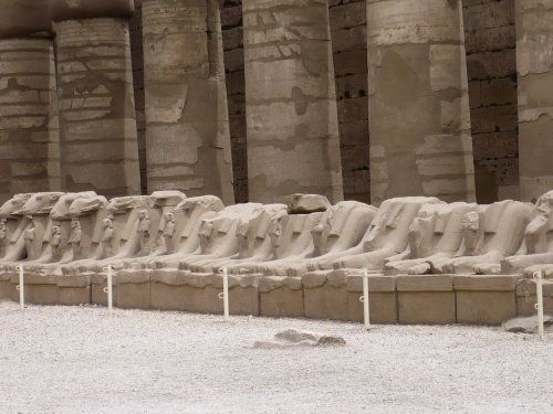 87 Luxor Karnak-Tempel Sphinxallee