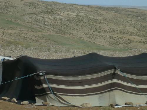 103 Akaba Fahrt nach PETRA Beduinenzelt