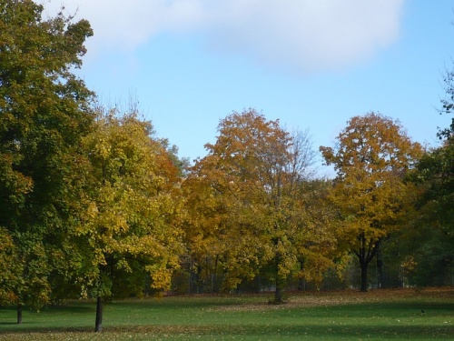 NordPark Erfurt im Herbst
