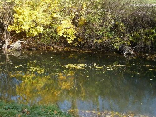 Varianten -5- Goethes Gartenhaus im Herbst