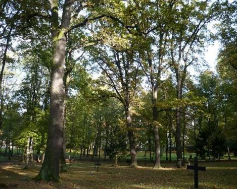 Weimar 19 Historischer Friedhof