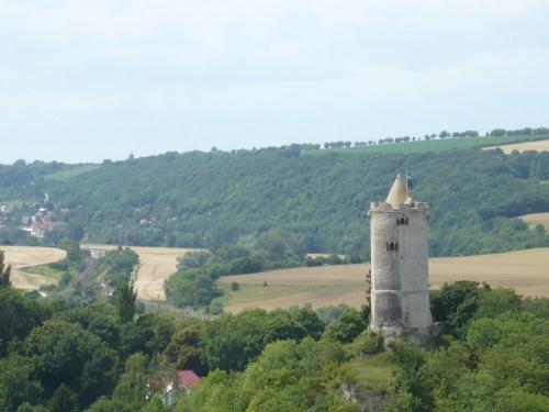 Blick zur Saalburg