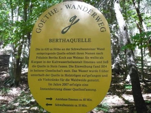 Ilmenau - 07 Weg zur Bertha-Quelle 13