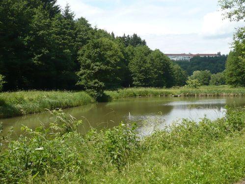 Bad Berka KneippWanderWeg 3.Teich