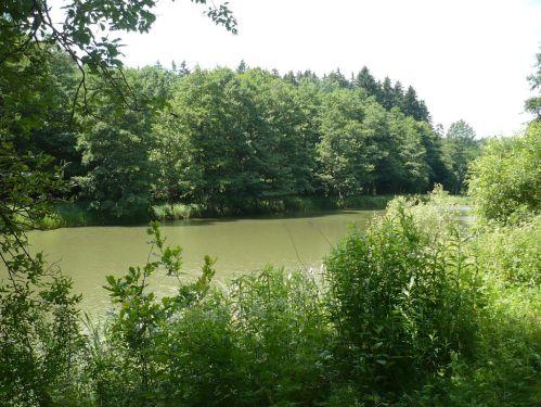 Bad Berka KneippWanderWeg 2.Teich