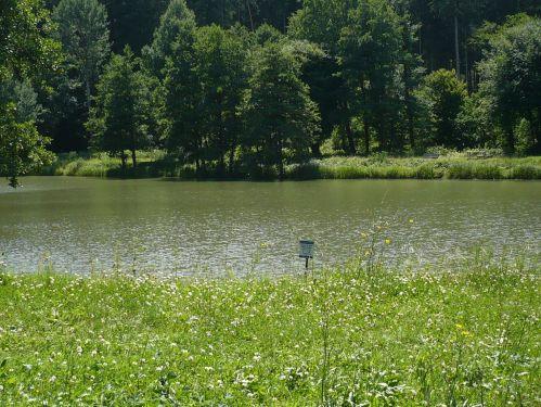 Bad Berka KneippWanderWeg 1.Teich