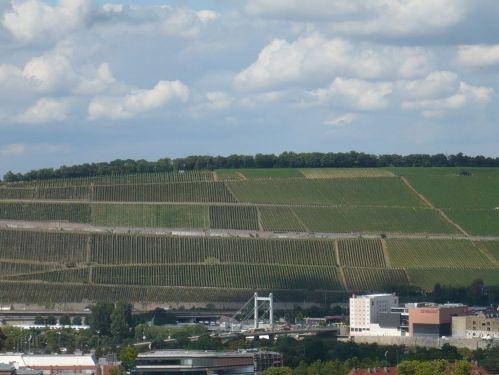 Würzburg 014 - Impressionen