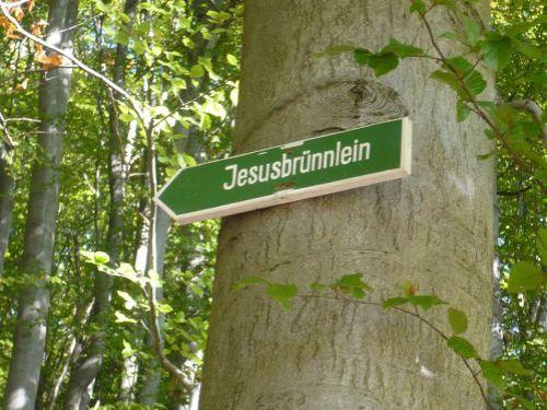 2012.10.11 Gr. HörselBerg-Wanderung 04