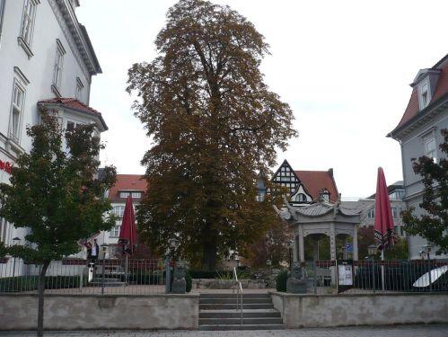 Erfurt FORUM 1 _ 3
