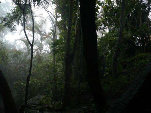 183 6.KSF RIO de JANEIRO _ Zuckerhut-Impressionen