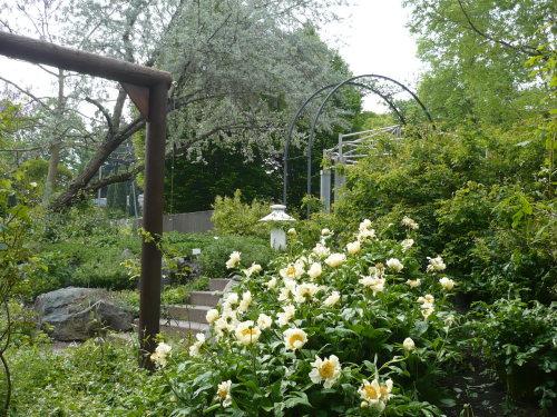 EgaPark M.-Pawlowna-Garten 11