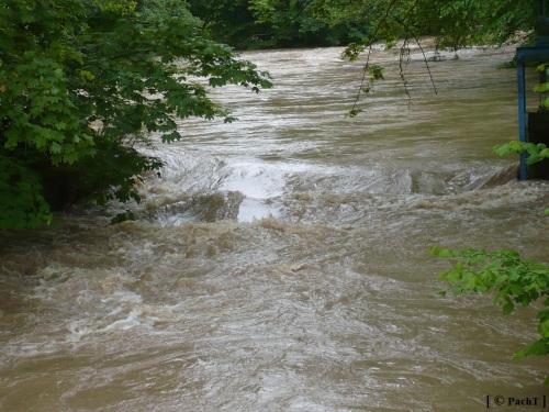 Weimar Ilmpark Hochwasser 01.06.13 2