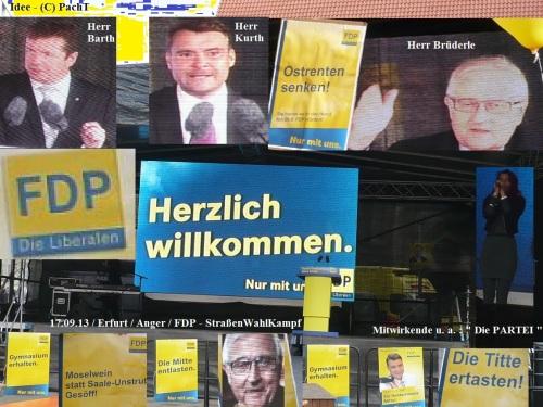 WahlKampfBeobachtung 2013 - 18 FDP m. Bruederle