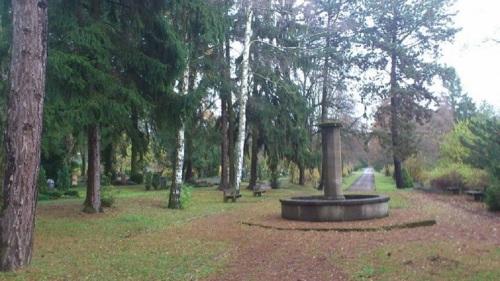 Hauptfriedhof 1