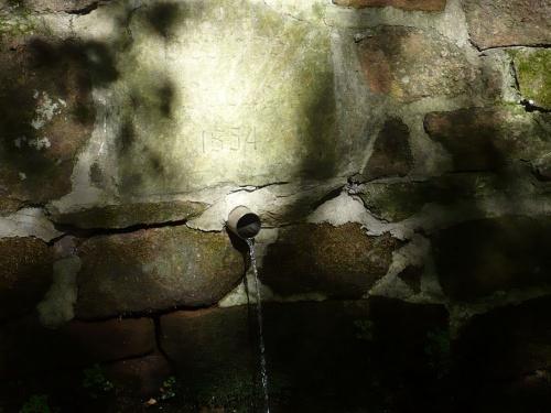 Ilmenau - 07 Weg zur Bertha-Quelle 14