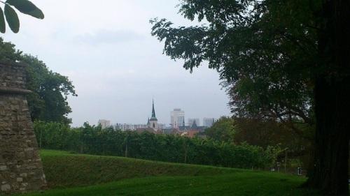 Petersberg Blick über die Stadt