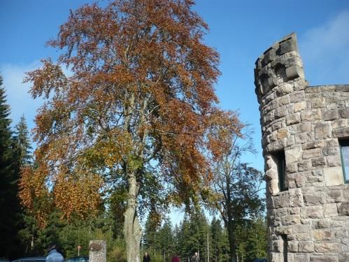 2014.10.18. Von Elgersburg zur Hohen Warte 17