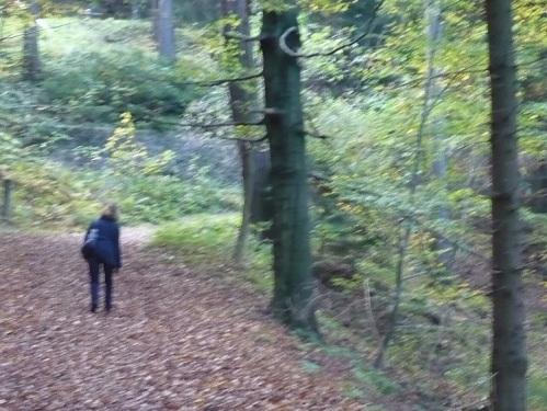 2014.10.18. Von Elgersburg zur Hohen Warte 12