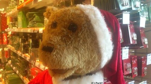 Weihnachtsmann, der singen kann