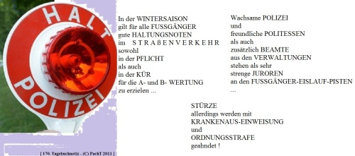 SSW170.Gedanke_Rat im Winter