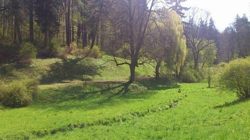 Weimar SchloßuPark Belvedere_20 Park