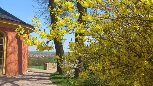 Weimar SchloßuPark Belvedere_18 Park