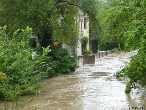 Weimar Ilmpark Hochwasser 01.06.13 1