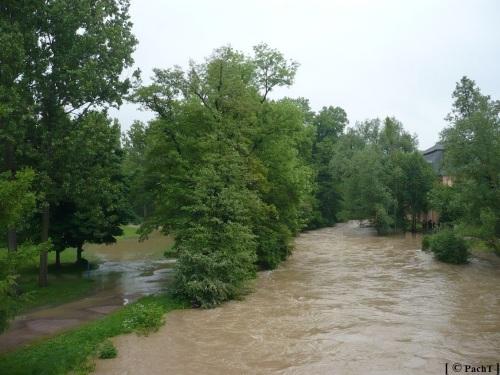 Weimar Ilmpark Hochwasser 01.06.13 3
