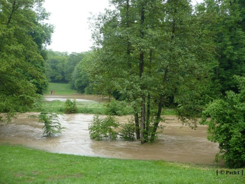 Weimar Ilmpark Hochwasser 01.06.13 5