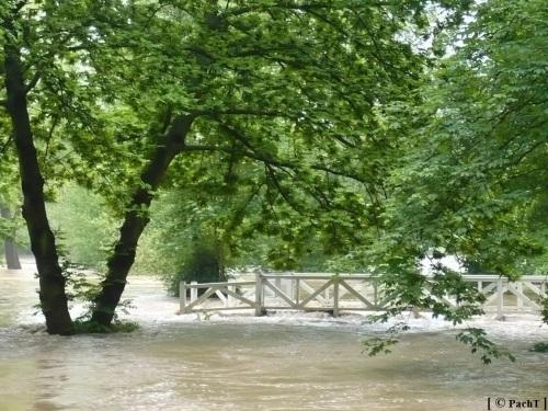 Weimar Ilmpark Hochwasser 01.06.13 6