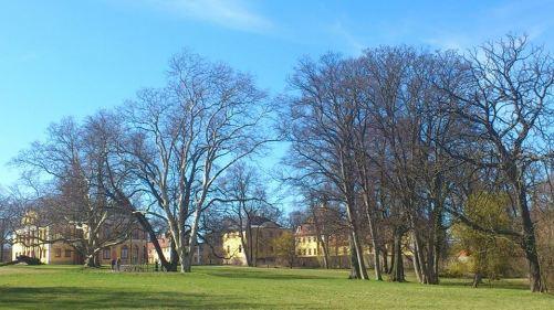 Weimar SchloßuPark Belvedere