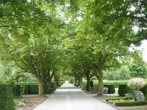 Stadt MÜHLHAUSEN 34 Friedhof