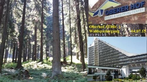Oberhof 1 Waldspaziergang 04.07.15