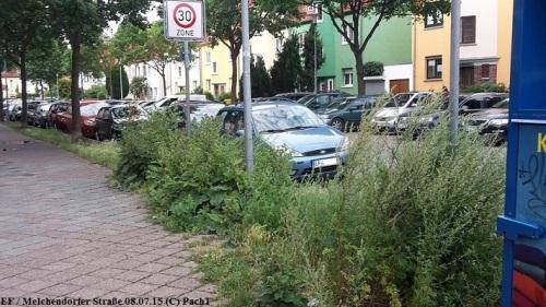 Erfurter Straßenbegleitgrün - Beispiel