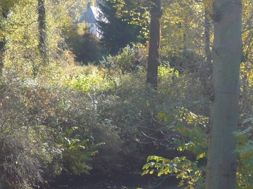 Varianten -1- Goethes Gartenhaus im Herbst
