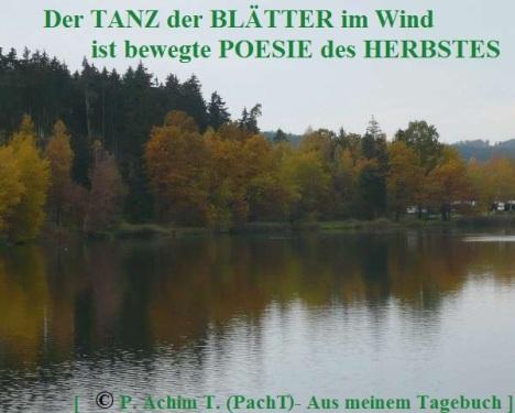 SSW299.Gedanke_Herbst