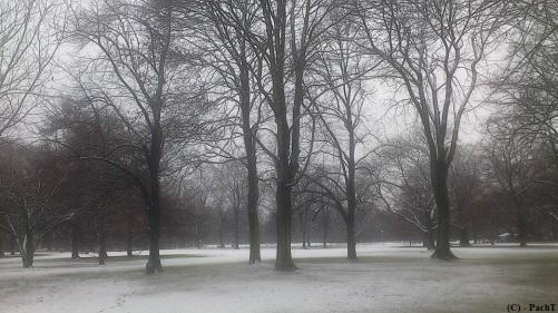 Winter - ein Hauch
