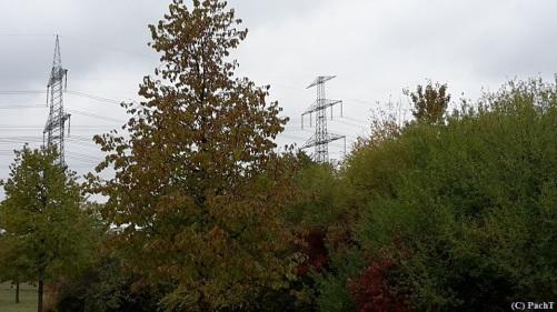 Herbst - Strom
