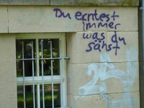 Graffiti_Gibt es ein Recht auf Dummheit ?