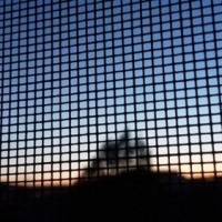 31.05.20 #Beobachtung in  der #Nacht: Der #Tod klopft beim #Nachbar an ... #