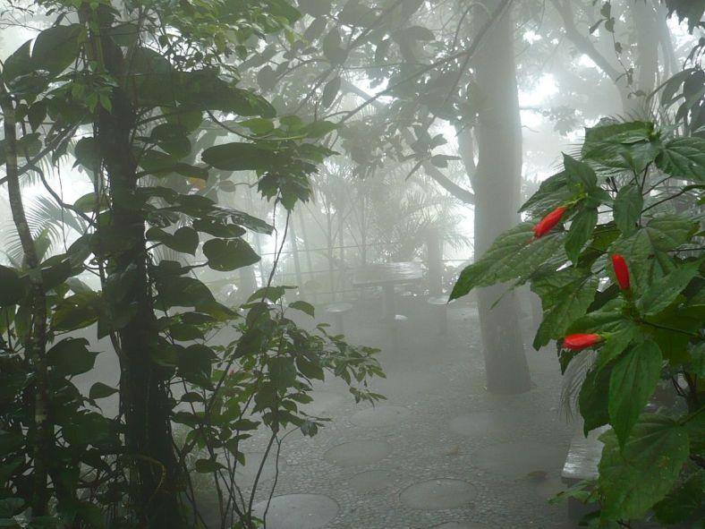 184 6.KSF RIO de JANEIRO _ Zuckerhut-Impressionen