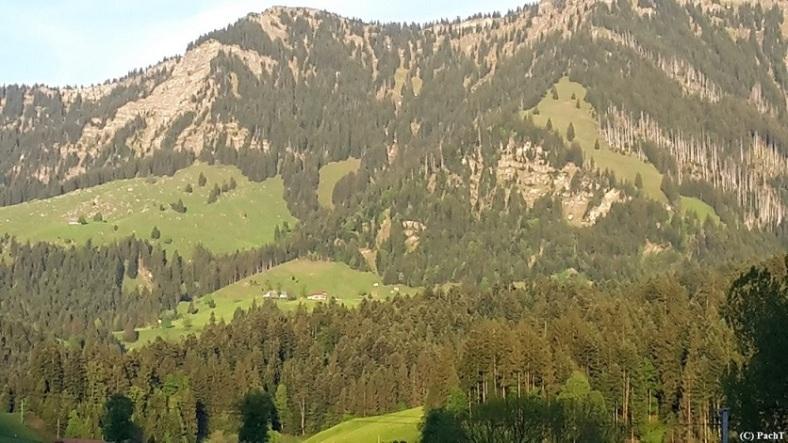 2016.05.23.-28. 016 Blick v. Kirchhof