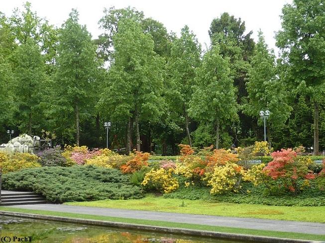 2016.05.23.-28. 040 Bern _ Rosengarten