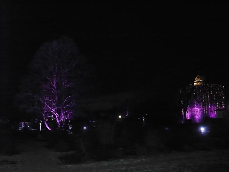 2017-01-29-29-winterleuchten-egapark