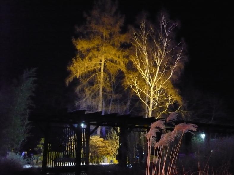 2017-01-29-35-winterleuchten-egapark