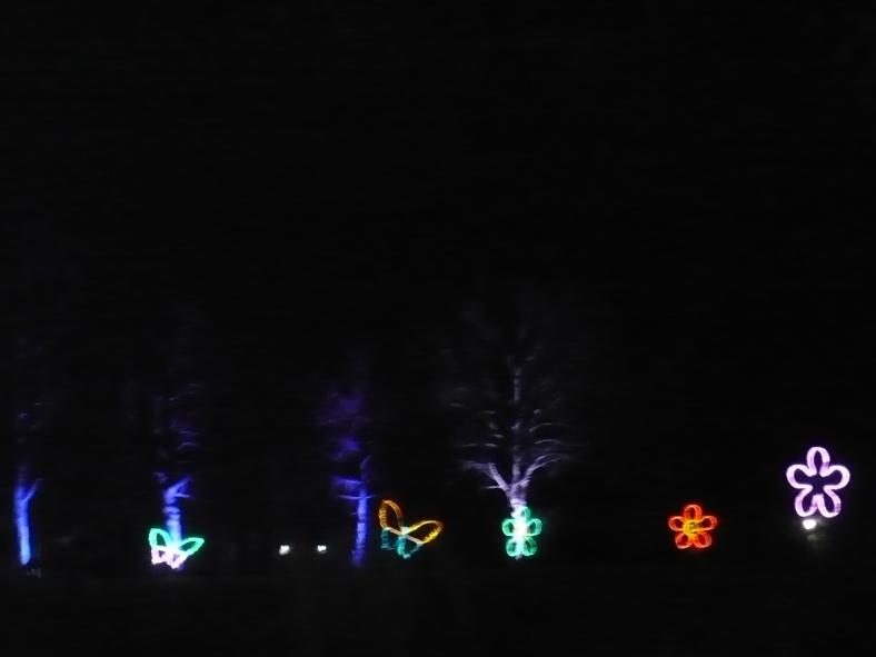 2017-01-29-38-winterleuchten-egapark
